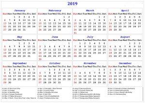 12 Month Printable Calendar 2019