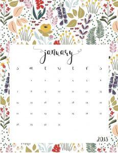 Cute January 2019 Calendar Wallpaper