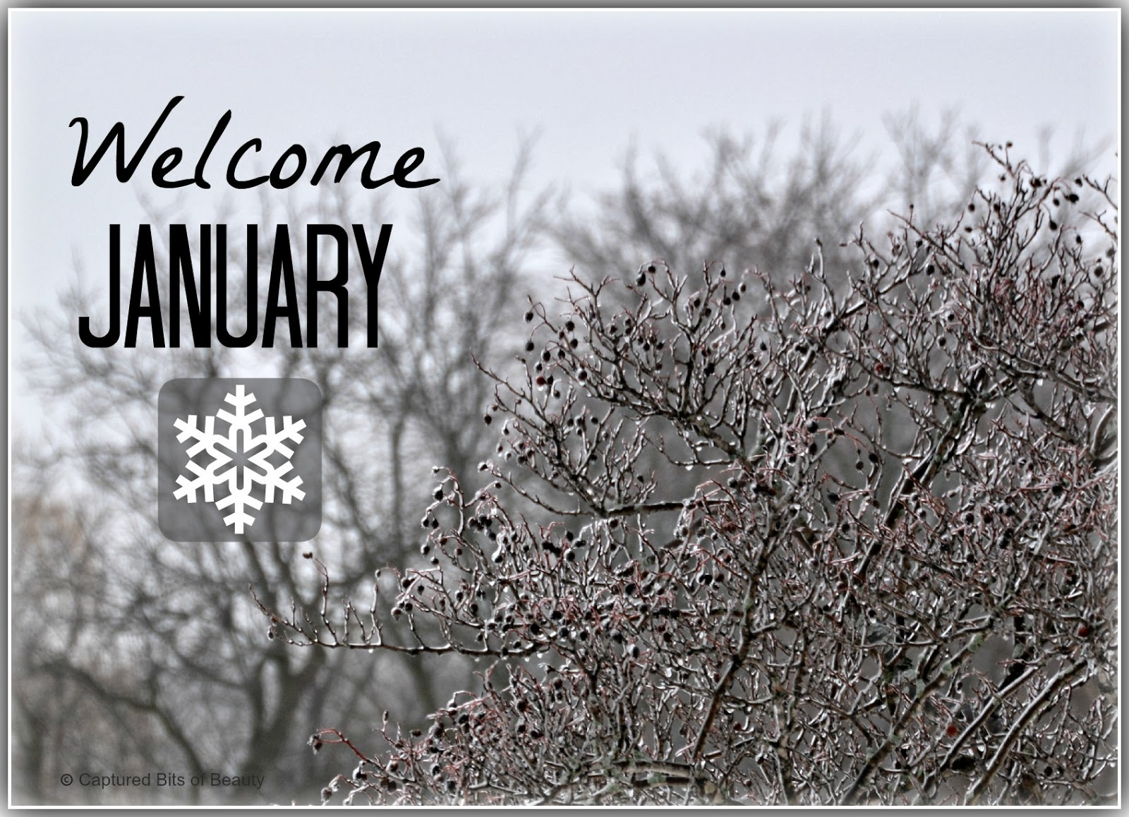 Welcome January Wallpaper