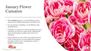 January Birth Flower Pictures