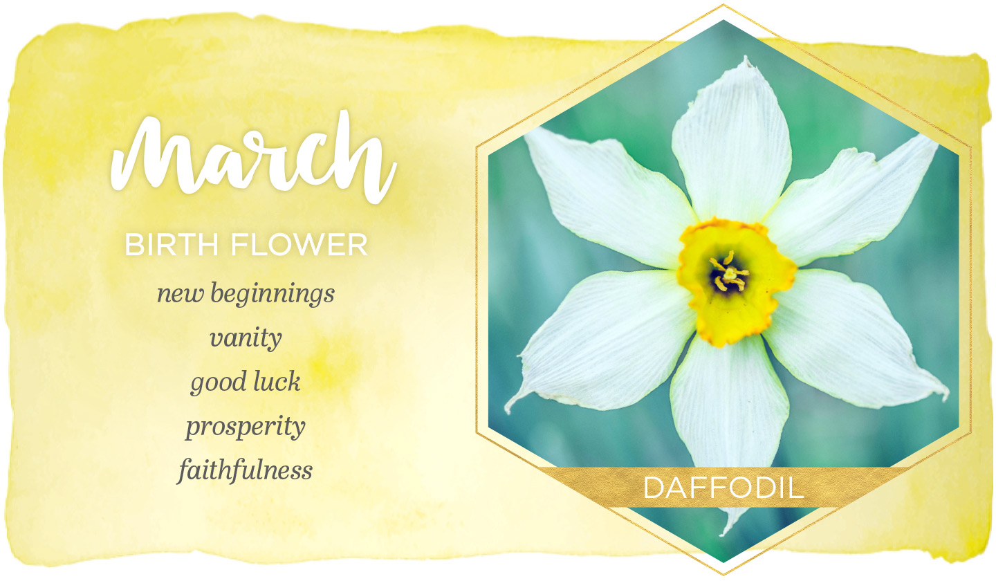 March Birth Flower Meaning