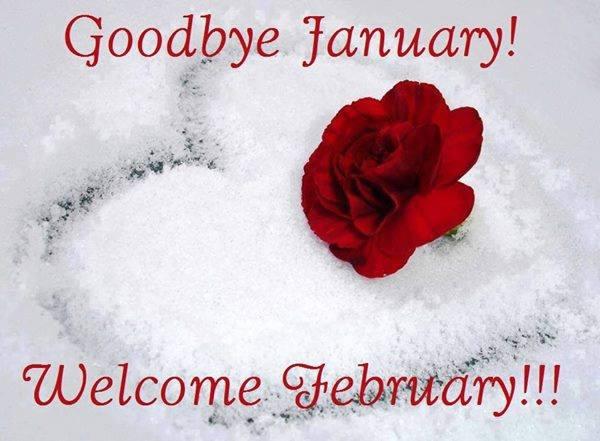Goodbye January Welcome February