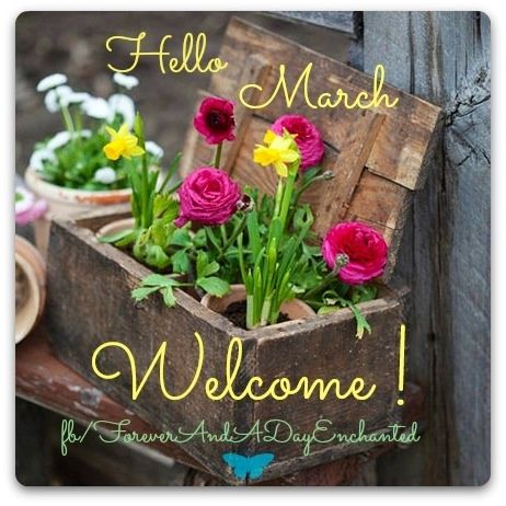Welcome March Pictures