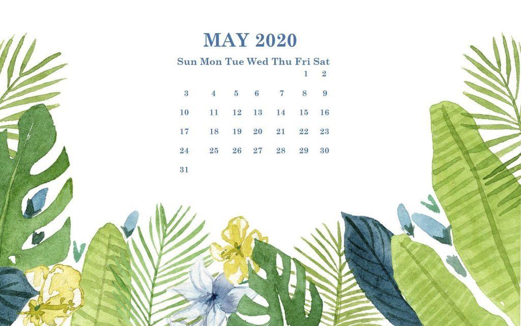 Cute May 2020 Calendar Wallpaper