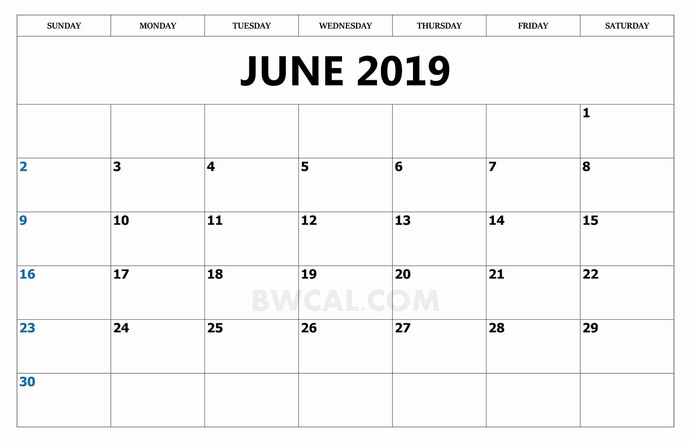 Blank June 2019 Calendar Word