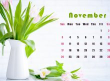 November 2019 HD Calendar Wallpaper